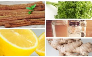Рецепт с имбирем, уксусом, петрушкой и корицей для похудения: отзывы