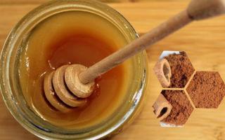 Как похудеть с помощью корицы и меда: можно ли на ночь, полезные свойства и диета